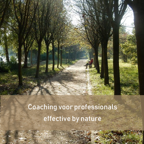 coaching-voor-professionals -- leadershipdialogue.eu
