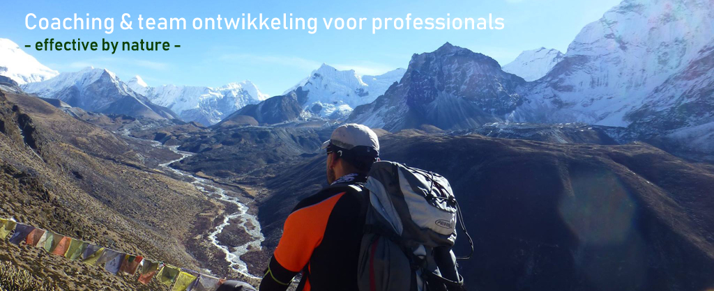 coaching en team ontwikkeling voor professionals - effective by nature -