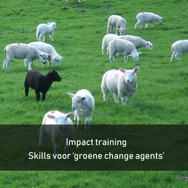 impact-training--skills-for-sustainable-change-agents--leadershipdialogue.eu