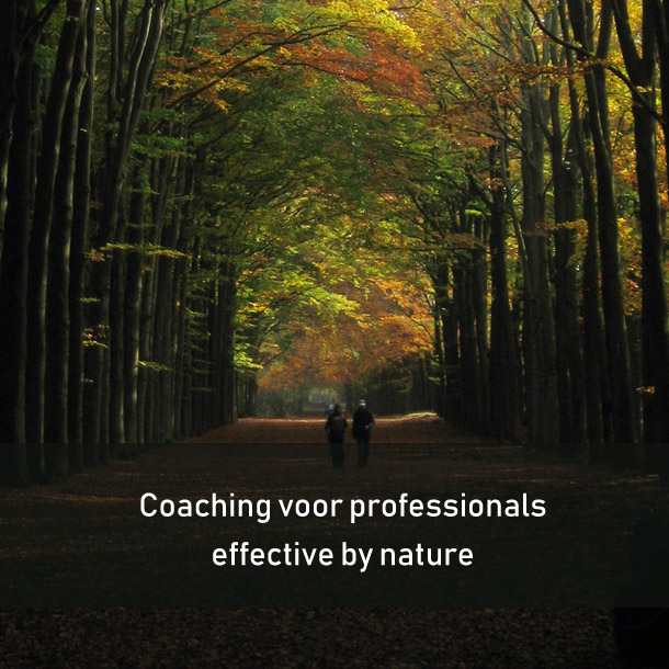 coaching-voor-professionals-2--leadershipdialogue.eu